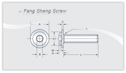 Flange Screw